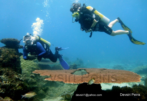 PADI Advance Open water course